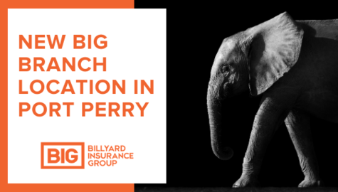 Billyard Insurance Group | New Branch in Port Perry Ontario | BIG Elephant